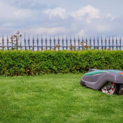 Robotic lawn mower on grass, side view. Garden modern remote technology.